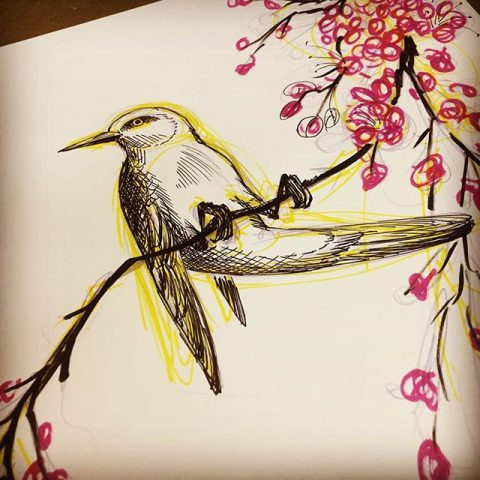 bird on tree drawing
