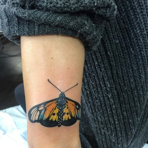 monarch butterfly arm tattoo